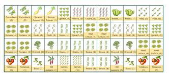 lovable companion vegetable garden layout companion planting chart