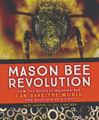 move over honey bee here comes the mason bee civil eats