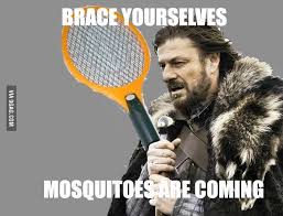 Mosquito Meme - brace yourselves imminent ned brace yourselves x is coming meme