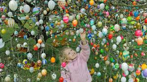 german easter egg tree germany s easter enthusiasm painted eggs decorated trees and