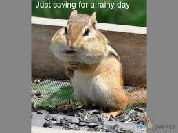 Rainy Day Meme - wet weather memes image memes at relatably com