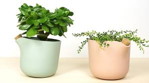 ultimate self watering flowerpot the natural balance by studio