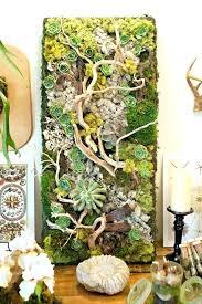 Indoor Hanging Garden Ideas Indoor Hanging Garden Ideas Photos Landscaping Ideas For