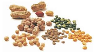 legumes cuisine legumes
