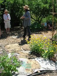 tilth u0027s demo garden life in the sustainable garden eat the