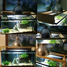 unusual and creative diy aquarium diy aquarium creative and