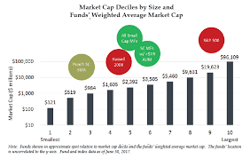 What Is The Blind Spot True Small Cap Investing An Institutional Blind Spot