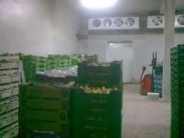 chambre froide pour fruits et l馮umes chambres froides polyvalents wmv