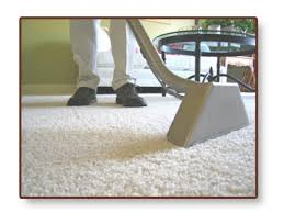 Area Rug Cleaning Boston Boston Area Quality Carpet And Uphostery Cleaning Water Damage