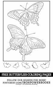 649 best a butterflies u0026 bugs images on pinterest coloring