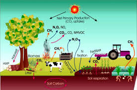 global warming causes and effects global warming causes and health issues environment protection
