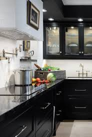 mini kitchen cabinets for sale 30 sophisticated black kitchen cabinets kitchen designs