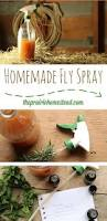 best 25 homemade fly repellant ideas on pinterest natural bug