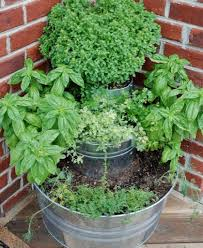 Garden Tips And Ideas 50 Gardening Ideas Tips