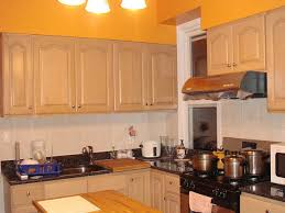 tag for paint colors for kitchen walls with oak cabinets modern
