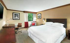 downtown asheville accommodations king guest room four points