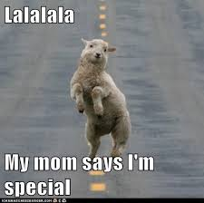 lalalala my mom says i m special animal funny animal and memes