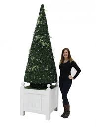 Decorated Christmas Tree Hire by 122 Best Trees Plants U0026 Foliage Prop Hire Images On Pinterest