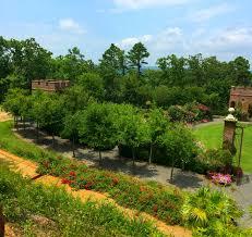 Barnhill Rock Garden by Arkansas Made Reflections From Dorothy