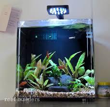 Aqueon Led Light Aqueon Evolve Desktop Aquarium Is The Cheapest Tank We U0027d Actually