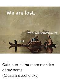 Mere Cat Meme - we are lost why is our captain a cat quiet cats purr at the mere
