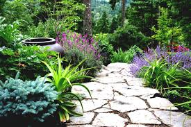 awesome looking flowers outdoor backyard flowers awesome landscaping ideas backyard