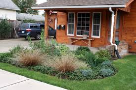 Landscaping Ideas For Backyard With Dogs by Garden Design Garden Design With Rain Garden Sign Copyright