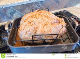 seasoned uncooked turkey in roasting pan royalty free stock images