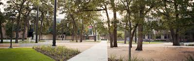 Dissertations In Education Theses And Dissertations University Of Houston