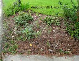 Mailbox Flower Bed Digging With Dana My Southern Style Of Living Through Gardening