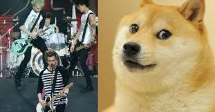 Dogge Meme - 5 seconds of summer just revived the doge meme for some strange reason