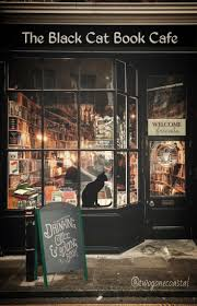 5665 best shops boutiques display images on pinterest shops the black cat book cafe looks like the perfect one to carry my