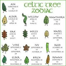 the celtic tree zodiac is based on the ancient idea that the time
