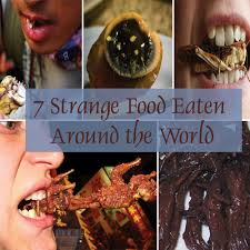 7 strange food eaten around the world slide 1 ifairer