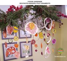 diy dried fruit ornaments use a dehydrator to fruit the