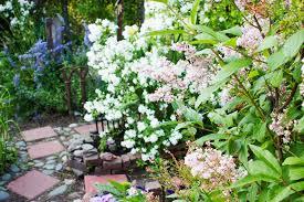 planning ahead starting your outdoor garden indoors kabloom