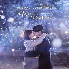 download mp3 full album ost dream high download album various artists while you were sleeping ost mp3