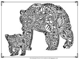 bear coloring pages for printable realistic coloring pages