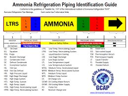 what color are your ammonia pipes ammonia psm rmp training