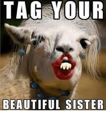 Sister Meme - tag your beautiful sister dank meme on me me