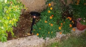 Alpan Solar Lights - how to replace old rechargeable batteries in outdoor solar lights