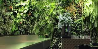 Vertical Garden Adalah - kaktus tropis apa itu vertical garden