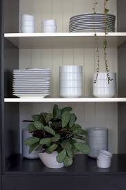 Indoor Plants Low Light by 7 Best My Plants Images On Pinterest Indoor Gardening Indoor