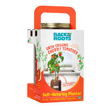 back to the roots self watering planter organic cherry tomato