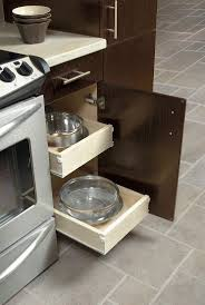 Roll Out Trays For Kitchen Cabinets 32 Best Cabinet Organization Images On Pinterest Kitchen