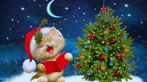 merry christmas kitten ultra hd wallpaper uhd wallpapers net