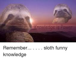 Funny Sloths Memes - 25 best memes about sloth funny sloth funny memes