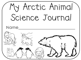 arctic animal coloring pages
