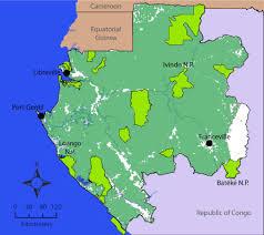 gabon in world map gabon stronghold of forest elephants