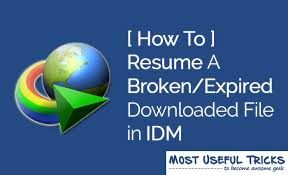 File Resume Download How To Resume Broken Expired File Downloads In Idm 100 Working